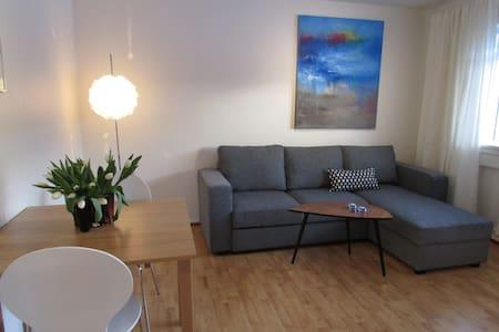 Cozy apartment near city center  - Рейкьявик