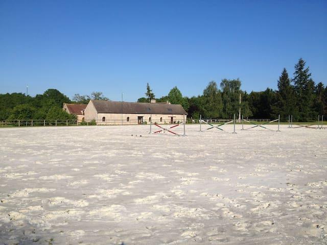 La Ferme des Iles - WE entre amis - La Ferté-Beauharnais - Ház
