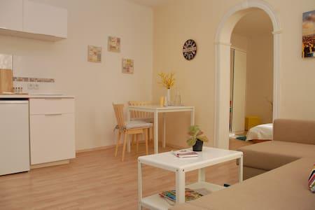 NEU MÖBLIERT! GEMÜTLICHE WOHNUNG - Fürth - Apartment