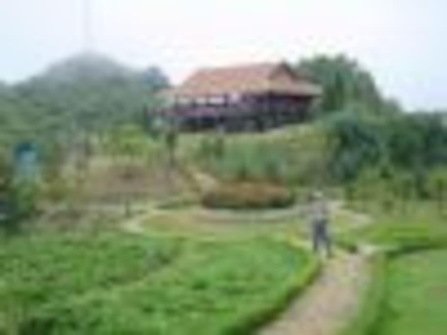 Local Tours Vietnam