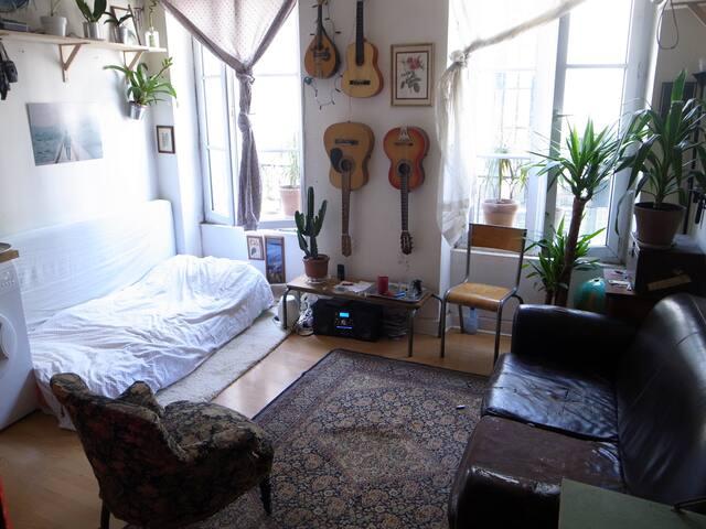 Appartement Paris Montmartre