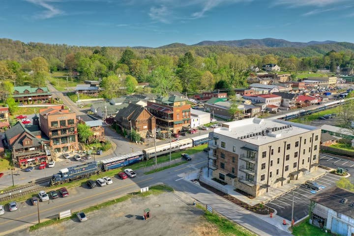 New condo @ B.R. Station in downtown Blue Ridge!