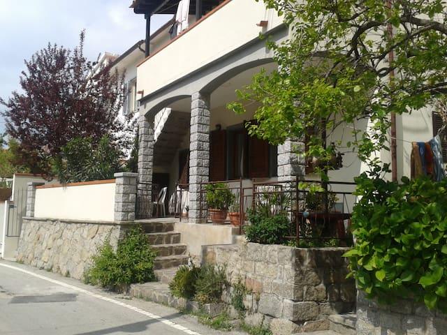 Island of Elba - Pomonte  IRIS
