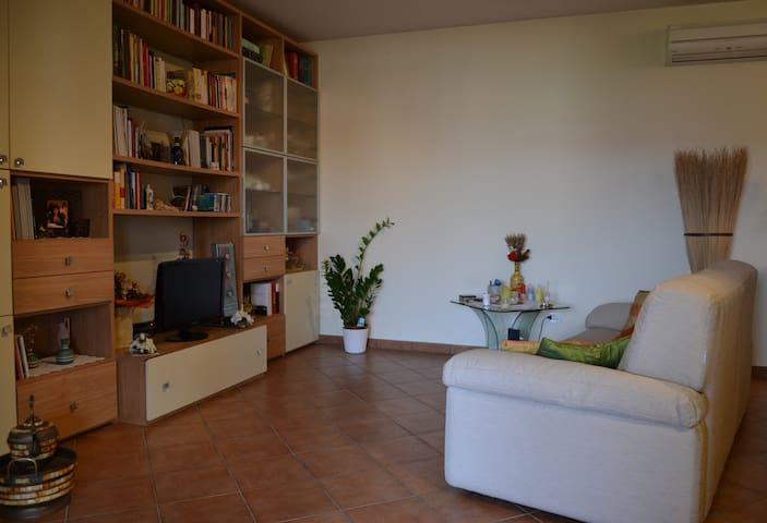 Florence Comfortable  Room