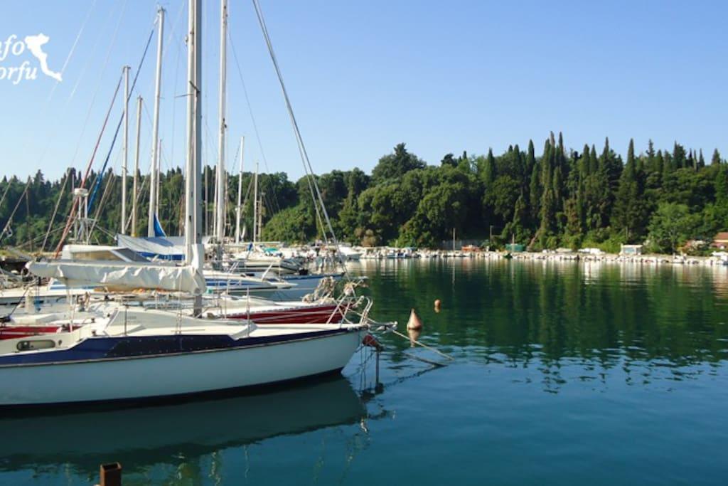 ipsos harbour