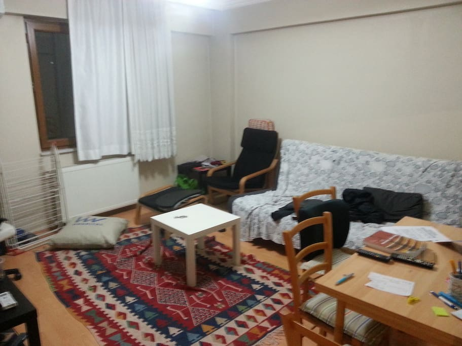 The living room. Also can be used as a room for two people.