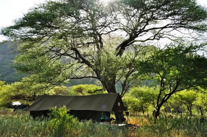 Camper au Village Massai - Laiboni