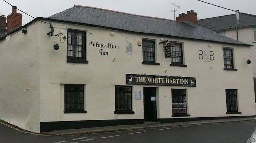 The White Hart Inn Room 6 Single