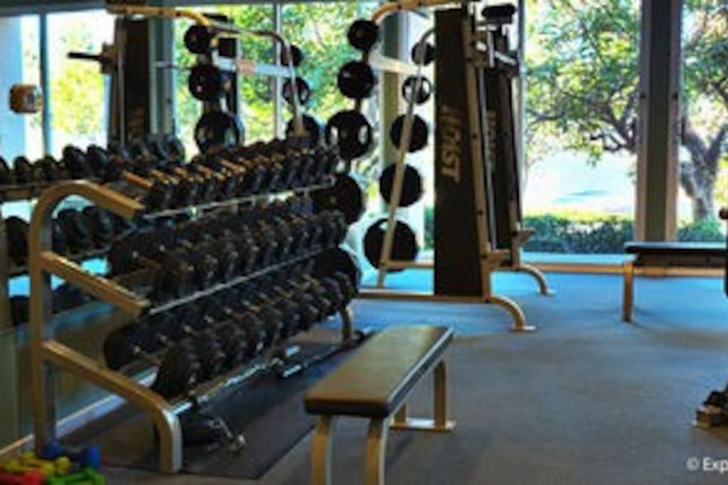 Gym & spa services available