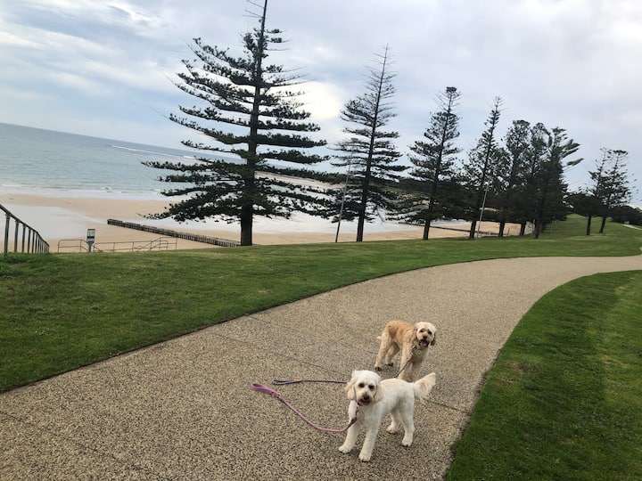Two Dog's Retreat by the Beach (The Esplanade!)