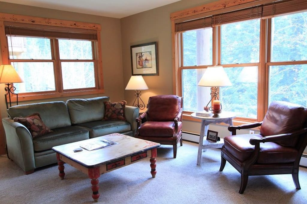 The living room features large windows and a sleeper sofa.