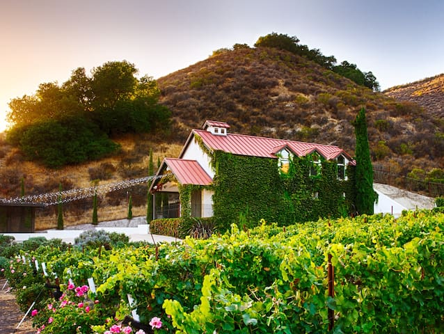 The Vineyard House in the Pastures of Heaven