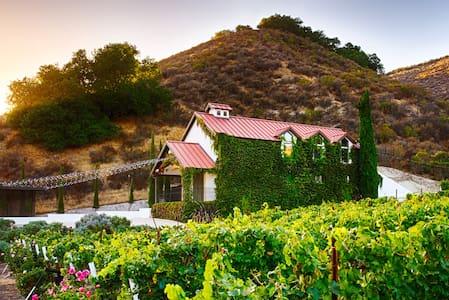 Vineyard House overlooking Private Vineyard