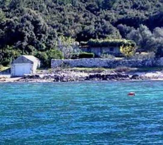 House-Robinson style direct on sea - Blato - Dom