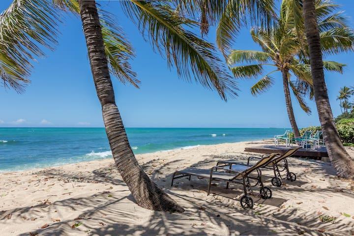 Shaka by the Beach