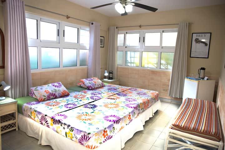 ★Havana Accommodation★La Casa de Ana B&B ★