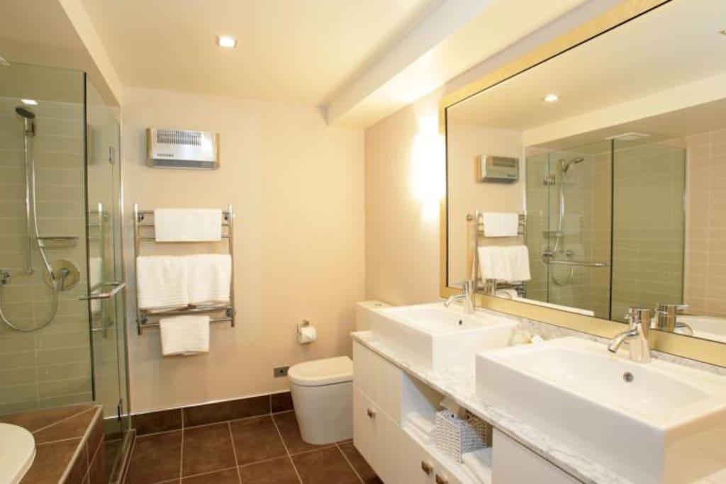 Master bathroom with spa