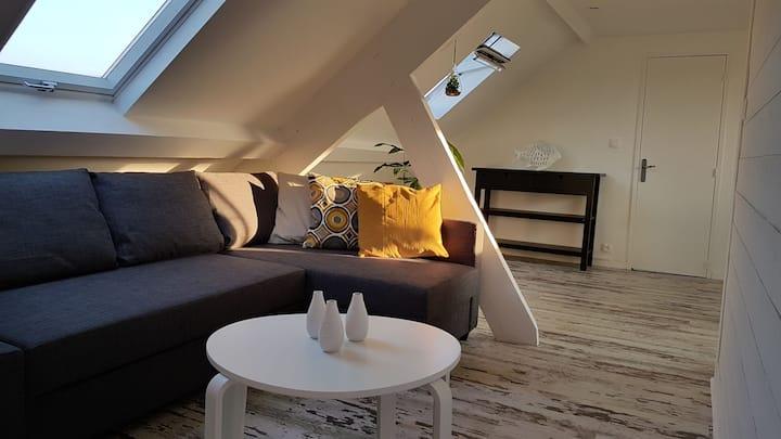 Loft de 60 m2 climatisé.