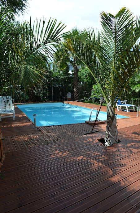 Studio de 2 3 pers 20m2 avec piscine in saint louis for Piscine 20m2