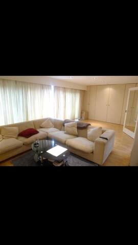 Penthouse with roof terrace very spacious and warm