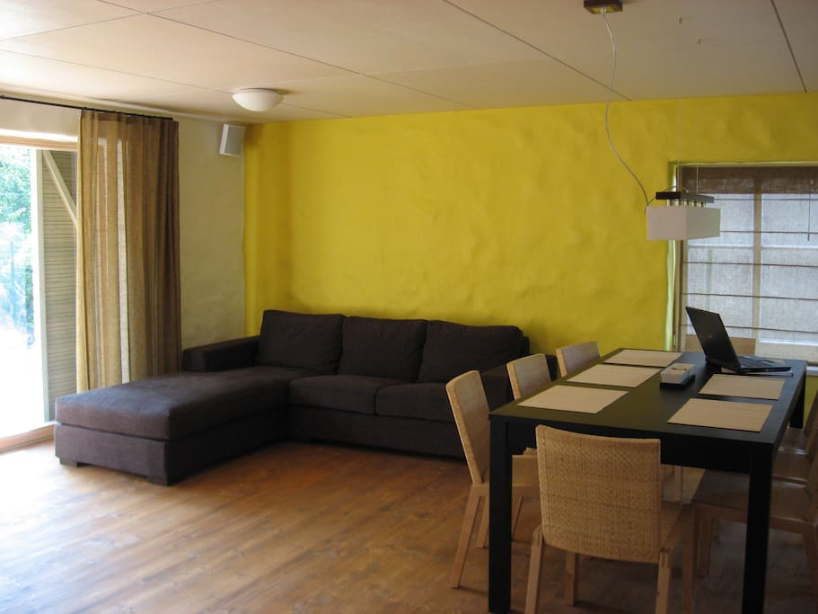 Living room, large sofa and table for 10
