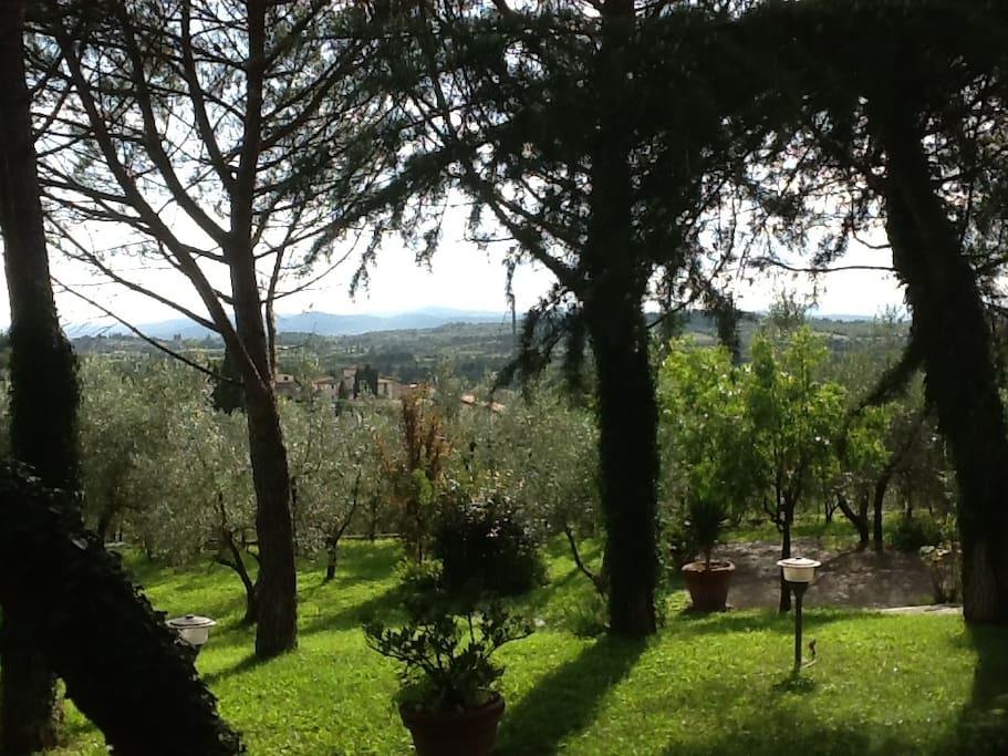 l'ampio giardino