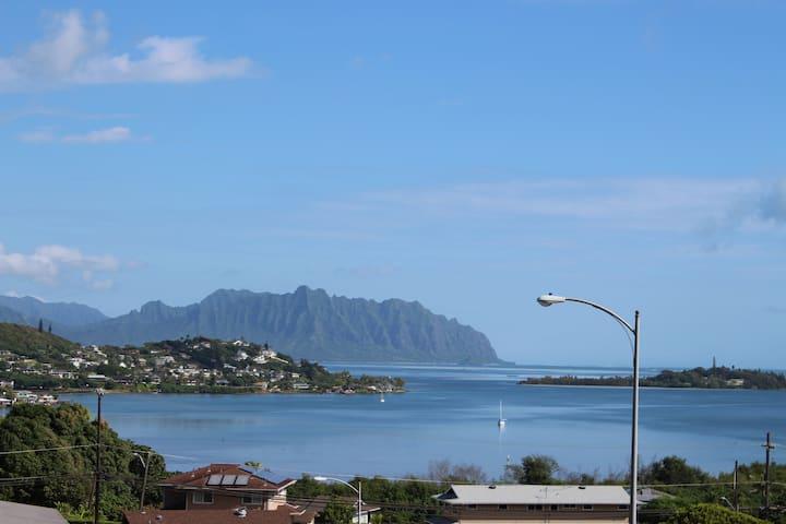Super ocean views, lush jungle, central location!