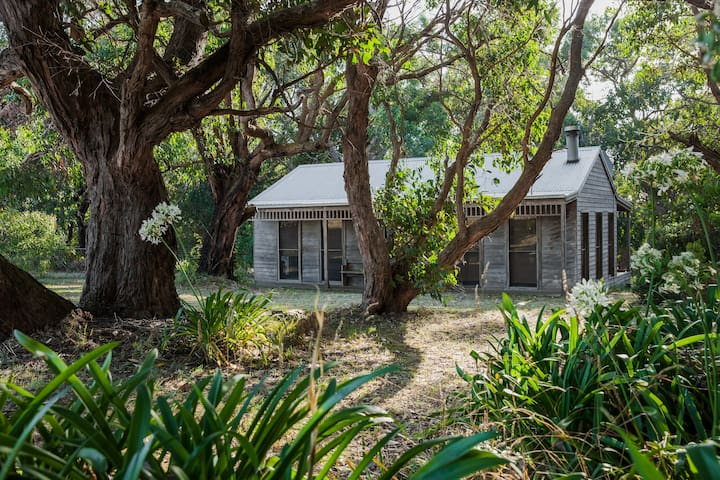Cosy Cottage in a Bush Setting - Port Campbell - Casa