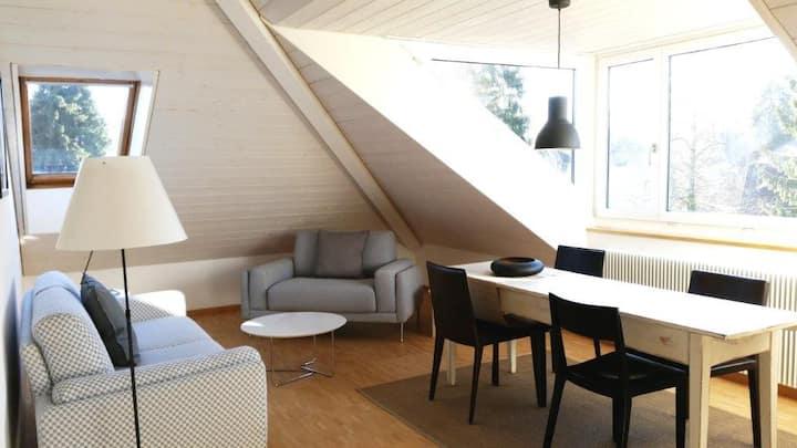 Modern attic apartment close HSG University & OLMA