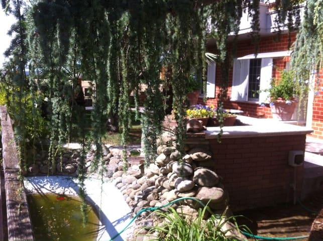 Villa Leardini - Appartamento gli Ulivi - Cattolica - Pis