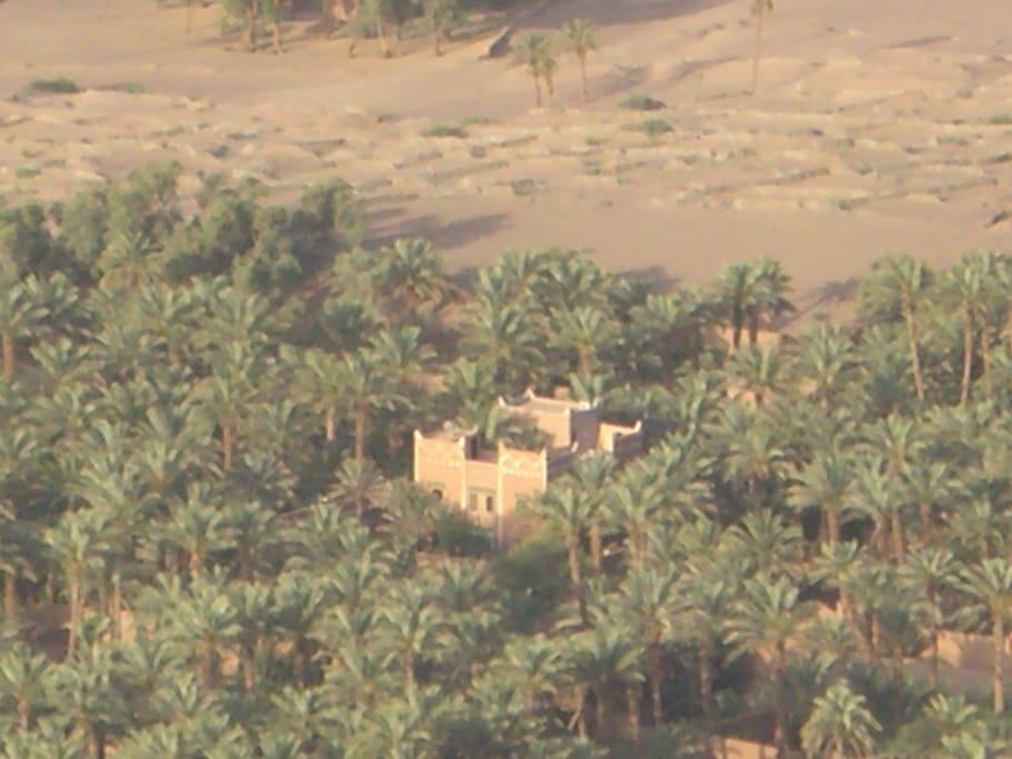 Ma villa dans les palmiers