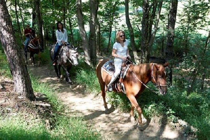 Year Round Horseback Riding..