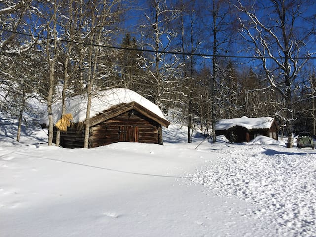 Old log houses in winter