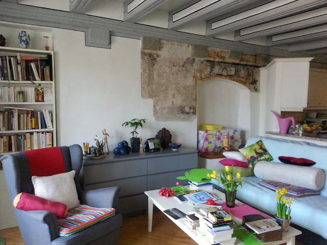 Comfort flat in historic building - Morges - Appartement