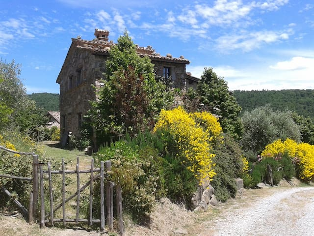 Romantic cottage with large garden - Piegaro - House