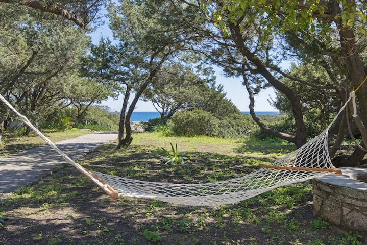beachfront Akti ground floor for 4 person sea view - Kiotari - Villa