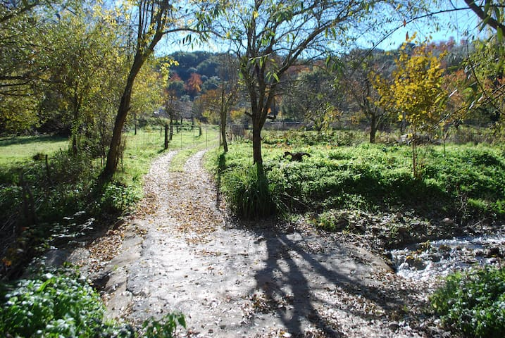Paraíso natural en Aracena - Aracena - Hus