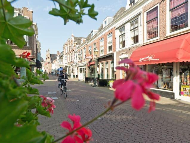Hague's best kept secret DOUBLE ROOM-FREE PARKING