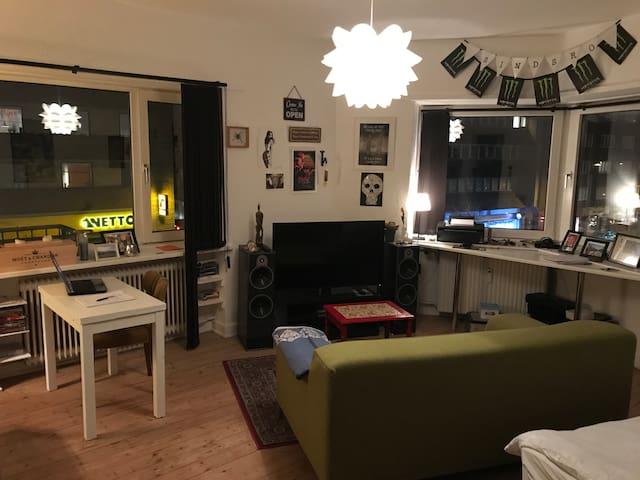 Hyggelig 1 værelses, i Aalborg centrum.