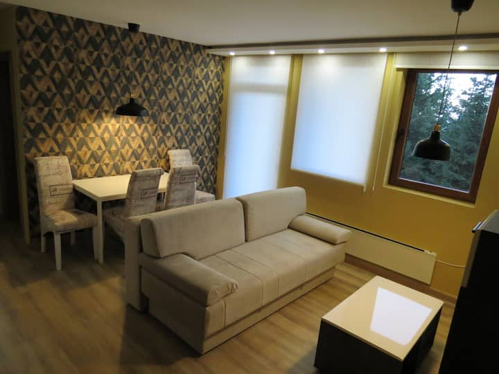 Yellow quince apt. 50m from the ski lift