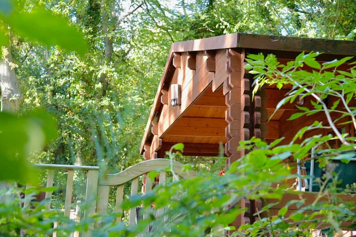 Log cabin in private woodland not far from Whitby