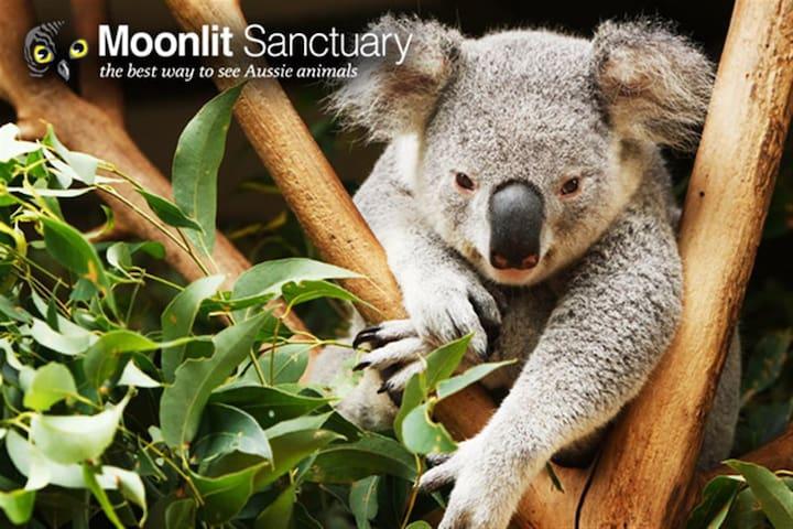 Moonlit Sanctuary Conservation Park