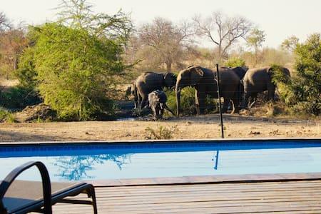 Safari Lodge in Greater Kruger Park
