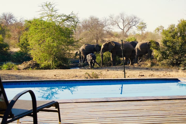 Masodini Game Lodge - Kruger Park