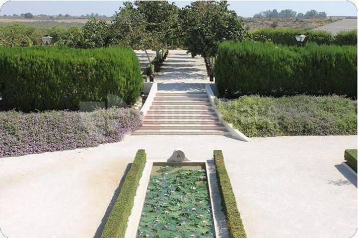 Hacienda El Roso Suite 2 - Sevilla - Bed & Breakfast