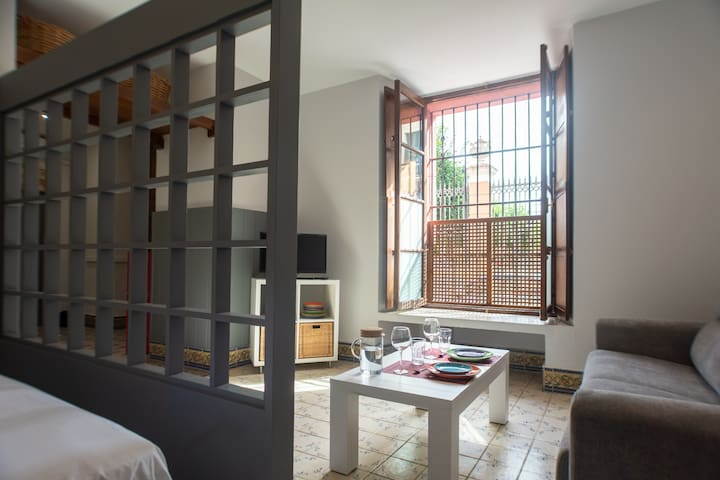 Beautiful loft in the Alameda de Hércules