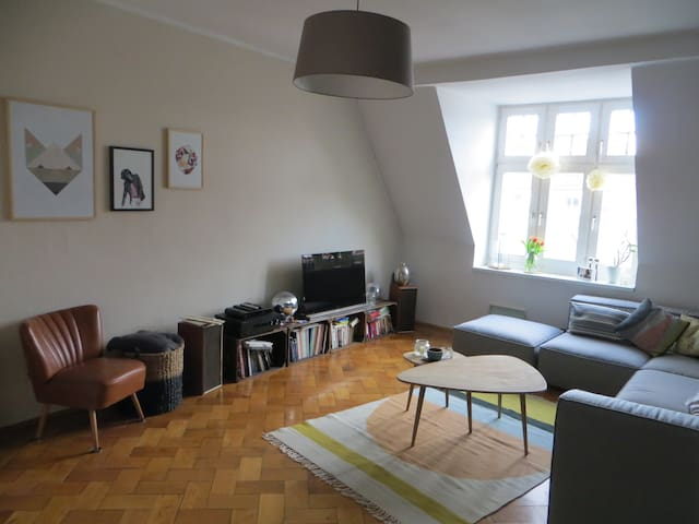 Altbau Wohnung mit Charme - Munich - Apartment