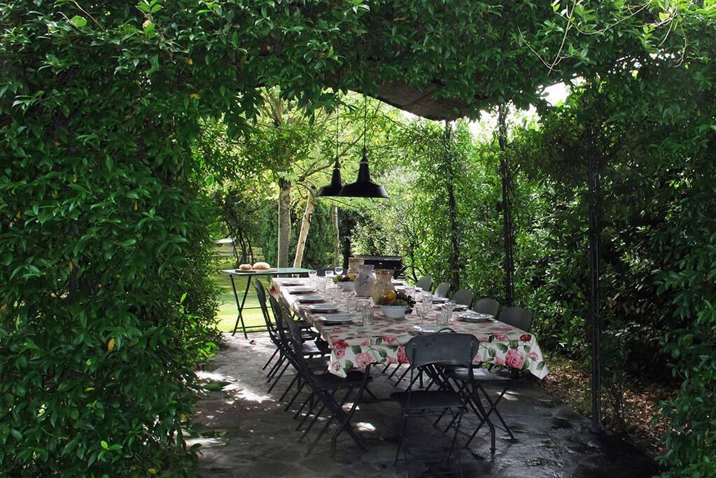 Tavolo esterno sotto il pergolato. Outside table