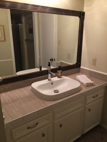 Master bath has a large vanity area and a shower.