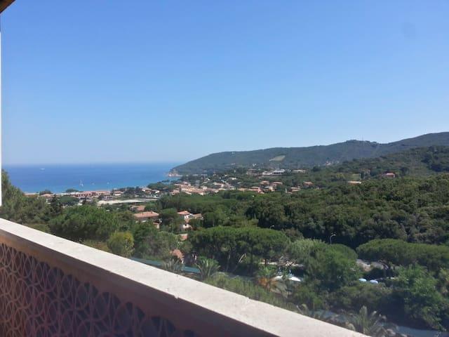 sunny apartment in Elba - Isola d'Elba, Comune di Marciana, frazione di Procchio - Apartment